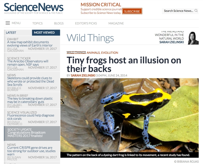 ScienceNewsIllusion.jpg